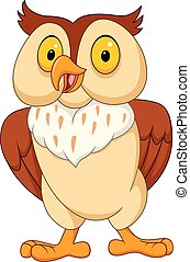 Cartoon funny owl isolated on white background