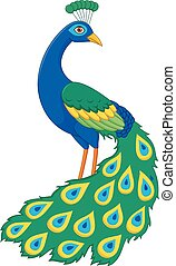 Cartoon funny peacock