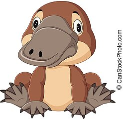 Cartoon funny platypus isolated on white background