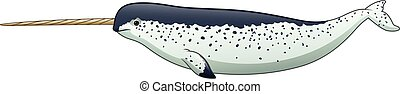 Cartoon narwhal isolated on white background