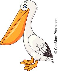 Cartoon pelican isolated on white background