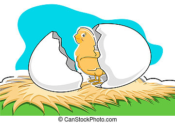 chick with broken egg