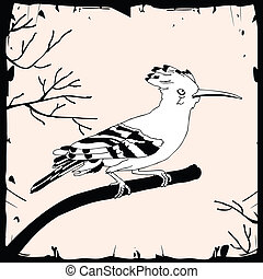 Illustration of Common Hoopoe