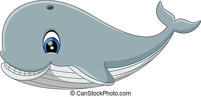 Illustration of cute cartoon whale