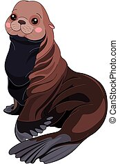 Illustration of cute Fur Seal