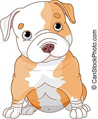 Pitbull puppy - Illustration of cute Pitbull puppy