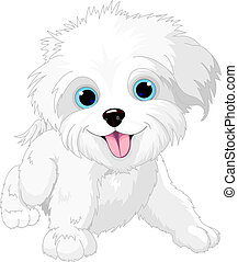 Playful lap-dog - Illustration of Cute Playful lap-dog