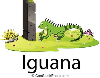 cute zoo animal alphabet I for Iguana with real animal