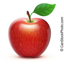 red apple - illustration of detailed big shiny red apple