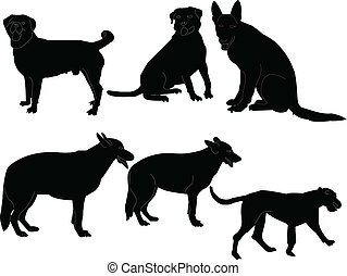 Illustration of dogs collection - vector.