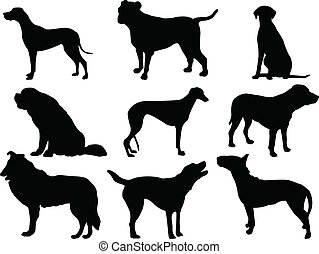 dogs collection - vector