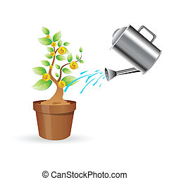dollar plant - illustration of dollar plant on white ...
