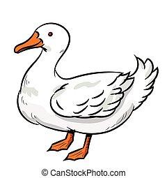 Illustration of Duck -Vector Illustration