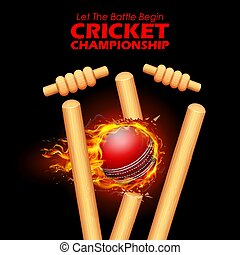 Fiery ball breaking the stumps for Cricket