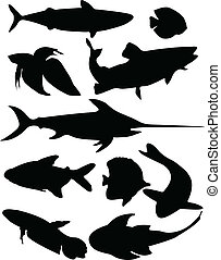 fish collection - vector