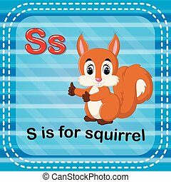 Flashcard letter S is for squirrel