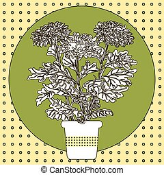 Illustration of flower in pot.