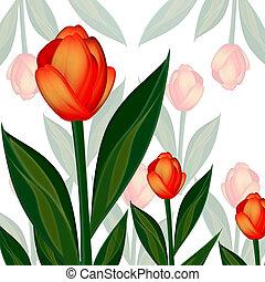 Illustration of flowers tulips
