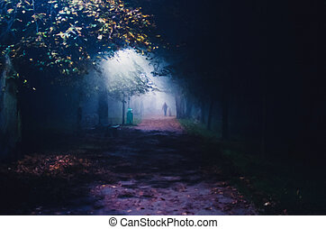 illustration of fog in the park at night, soft focus, one person
