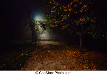 illustration of fog in the park at night, soft focus