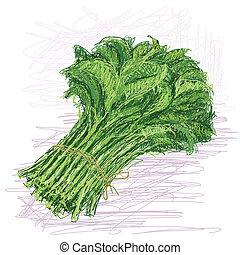 kangkong - illustration of fresh bunch of raw kangkong...