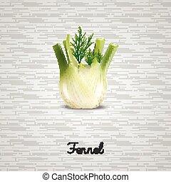 Fresh fennel illustration - Illustration of Fresh fennel...