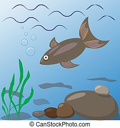 Illustration of freshwater fish in the underwater habitat.