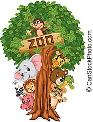 funny animal hiding behind a tree