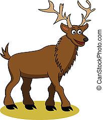 funny deer cartoon