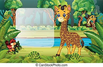 Giraffe in the forest