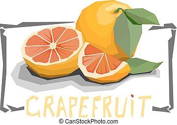 Illustration of grapefruit.