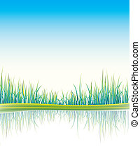 illustration of grass background - vector illustration of...