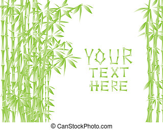 Illustration of green bamboo against white with copy space...