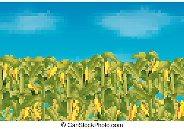 Green corn field growing up on blue sky - illustration of...