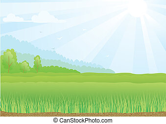 Illustration of green field with sunshine rays and blue sky.