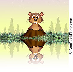 groundhog - illustration of groundhog