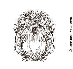 Illustration of hand drawn bird on white background