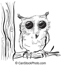 Illustration of hand drawn owl on a tree sketch