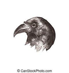 Illustration of hand drawn raven portrait