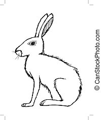 illustration of hare, wildlife, nature, animal
