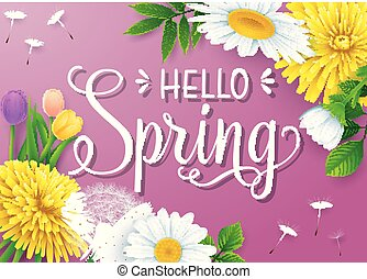 Hello Spring background with different flowers on purple background