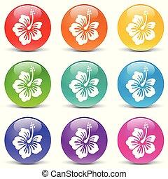 hibiscus set icons on white background
