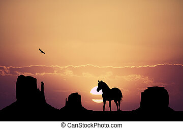 horse in the desert