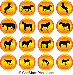 horses collection in buttons