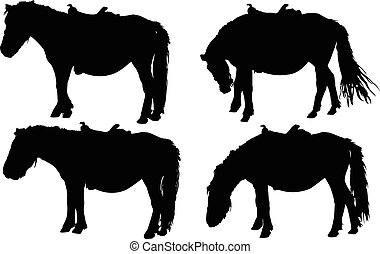 horses - vector - illustration of horses - vector