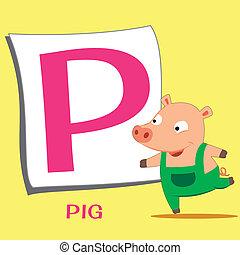 Pig Baby Reading Cartoon Wallpaper In Vector Format