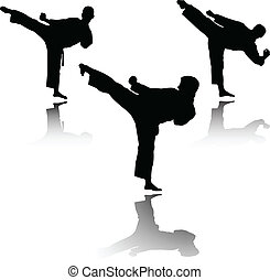 karate fighter - vector - illustration of karate fighter -...