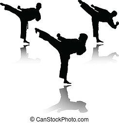 illustration of karate fighter - vector
