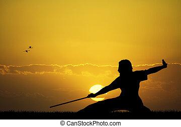 kung fu - illustration of kung fu