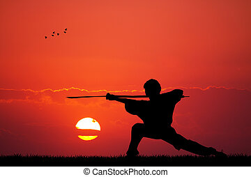 illustration of kung fu